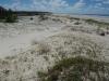 Дюны - общий вид